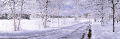 Snow Covered Road, Michigan, USA Photographic Print by  Panoramic Images