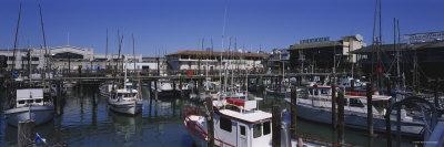 Boats Docked at a Harbor, Fisherman's Wharf, San Francisco, California, USA Photographic Print by  Panoramic Images