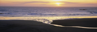 Sunset over the Ocean, Pistol River State Park, Oregon, USA Photographic Print by  Panoramic Images