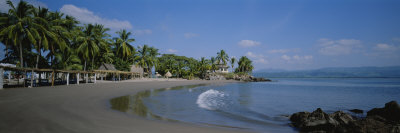 Palm Trees on the Beach, San Blas, Mexico Photographic Print by  Panoramic Images