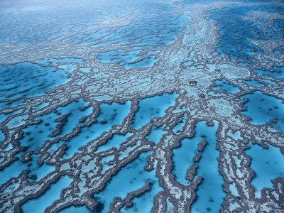 Aerial View of Great Barrier Reef, Queensland, Australia Premium Photographic Print by Jurgen Freund