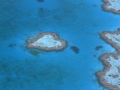 Aerial View of the Heart Reef, Hardy Reef, Great Barrier Reef, Queensland, Australia Premium Photographic Print by Jurgen Freund