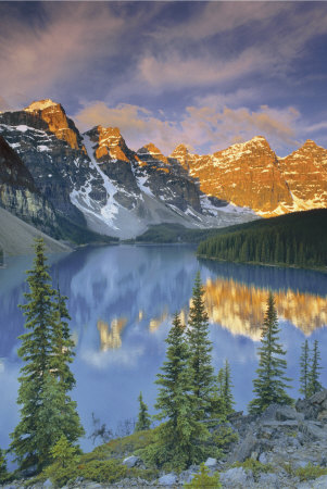 Rocky Mountain Gold Art Print