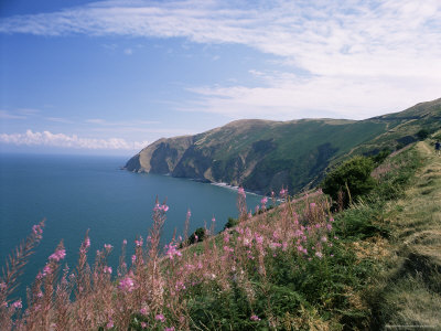 South West Peninsula Coast Path, Devon, England, United Kingdom Photographic Print by Chris Nicholson