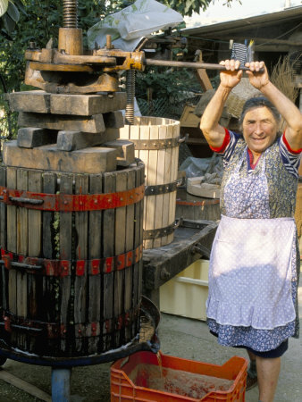 A Local Winemaker Pressing Her Grapes at the Cantina, Torano Nuovo, Abruzzi, Italy Photographic Print