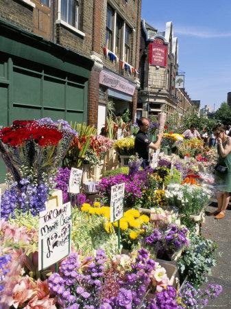 Sunday Flower Market, Columbia Road, London, England, United Kingdom Photographic Print by Lousie Murray