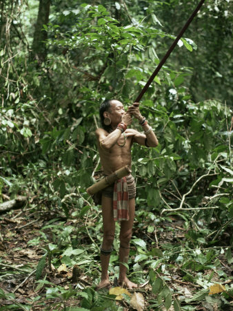Member of the Penan Tribe with Blowpipe, Mulu Expedition, Sarawak, Island of Borneo, Malaysia Photographic Print by Robin Hanbury-tenison