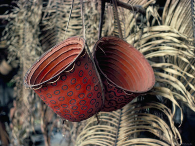 Baskets, Yanomami Indians, Brazil, South America Photographic Print by Robin Hanbury-tenison