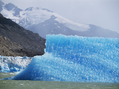 Glacial Icebergs on Lago Argentina, Patagonia, Argentina, South America Photographic Print by Lousie Murray