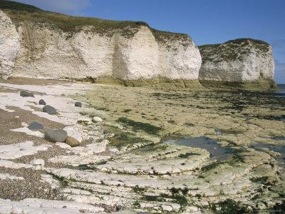 Wave-Cut Platform, and Chalk Cliffs, Flamborough South Landing, Yorkshire, England Photographic Print by Tony Waltham