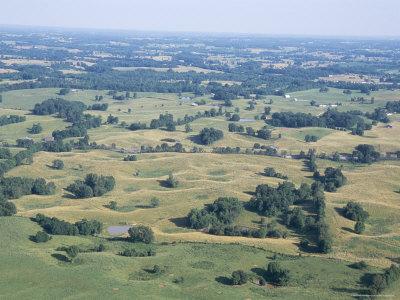 Sinkhole Plain, Polygonal Doline Karst, Near Mammoth Cave, Kentucky, USA Photographic Print by Tony Waltham