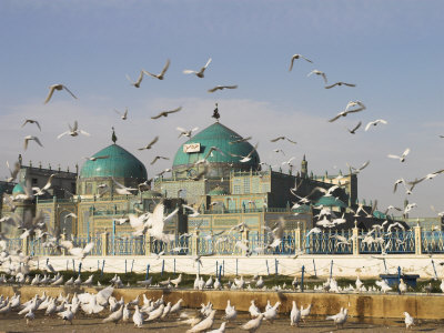 The Famous White Pigeons, Shrine of Hazrat Ali, Mazar-I-Sharif, Balkh Province, Afghanistan Photographic Print by Jane Sweeney