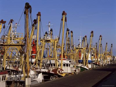 Fishing Fleet, Den Helder, Holland Photographic Print by I Vanderharst