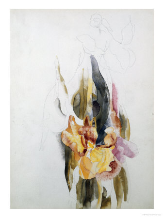 Iris reproduction procédé giclée