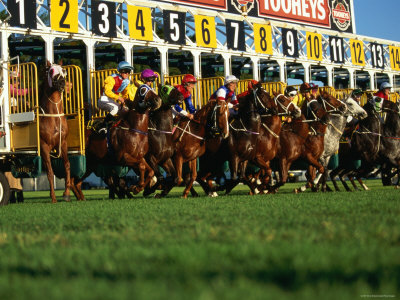 Start of Horse Race, Sydney, New South Wales, Australia Photographic Print by Oliver Strewe