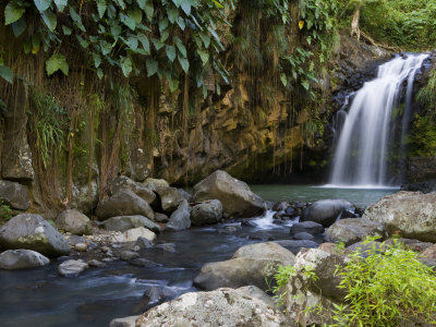 Annandale Falls, Constantine, St. George, Grenada Photographic Print by Holger Leue