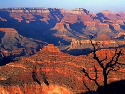 Grand Canyon from South Rim Near Yavapai Point, Grand Canyon National Park, Arizona Lámina fotográfica por Tomlinson, David