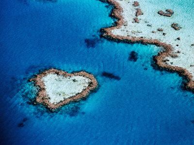 Heart-Shaped Reef, Hardy Reef, Near Whitsunday Islands, Great Barrier Reef, Queensland, Australia Lámina fotográfica por Holger Leue