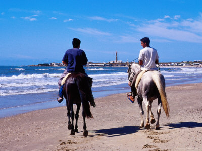 horseback riding quotes. horseback riding on beach.