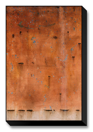 Freckled Phenotrope Limited Edition on Canvas by Atom Johnson