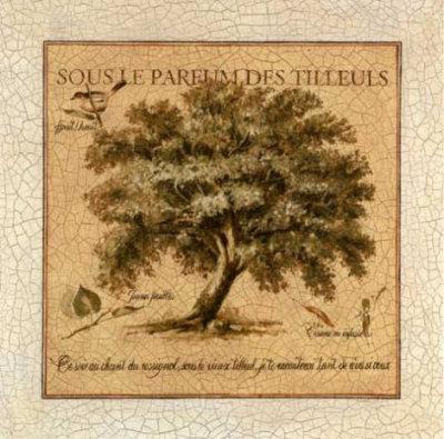 Sous le Parfum des Tilleuls Prints by Pascal Cessou