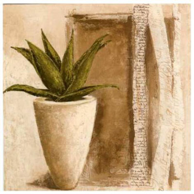 Aloe Prints by Véronique Didier-Laurent