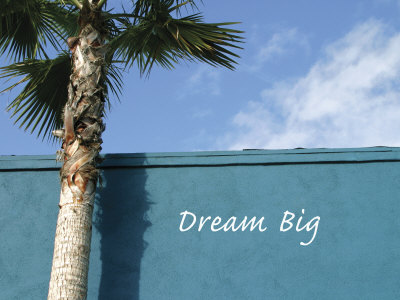 Dream Big Photo by Nicole Katano