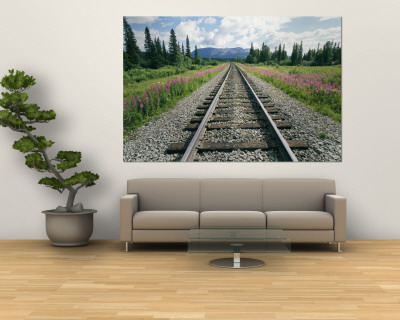 Alaska Railroad Tracks Lined on Either Side by Pink Fireweed Vægplakat