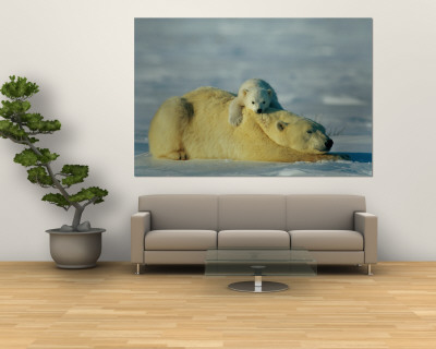 A Polar Bear Cub Rests Comfortably Atop the Back of His Mother Wall Mural