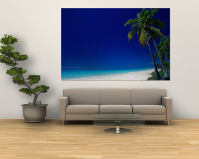 Beach Wall Murals on Muli  Mouly  Beach  Muli  New Caledonia Wall Mural   Allposters Co Uk