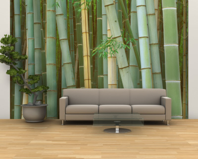 Bamboo Forest, Kyoto, Japan Wall Mural – Large