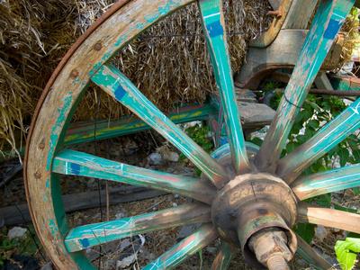 Wagon Wheels in Colorful Blues, Turkey Photographic Print by Darrell Gulin
