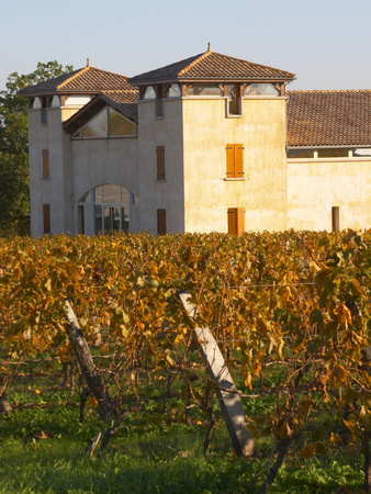 Winery Building and Golden Vineyard in Late Afternoon, Domaine Des Verdots, Conne De Labarde Photographic Print