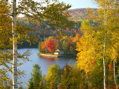 Summer Home Surrounded by Fall Colors, Wyman Lake, Maine, USA Fotografie-Druck von Steve Terrill
