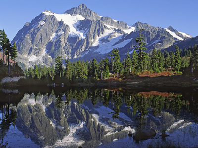 Mt. Shuksan in the Fall with Red Blueberry Bushes, North Cascades National Park, Washington, USA Photographic Print by Charles Sleicher