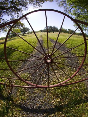 Gate with Metal Wheel Near Cuero, Texas, USA Photographic Print by Darrell Gulin