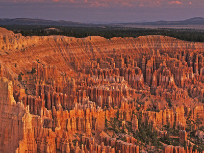 View of the Hoodoos or Eroded Rock Formations in Bryce Amphitheater, Bryce Canyon National Park Photographic Print by Dennis Flaherty