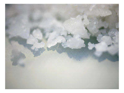 Salt Crystals Photo by Nicole Katano