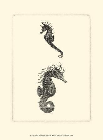 Sepia Seahorse Prints