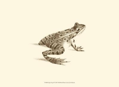 Sepia Frog II Prints by J. H. Richard