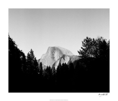Half Dome in Trees Giclee Print by Bradford Smith