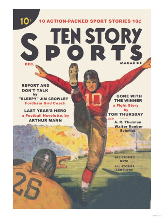 Ten Story Sports Poster