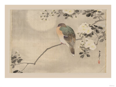 Bird and Cherry Blossoms Prints