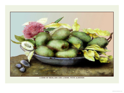 Dish of Medlars, A Rose, and Almonds Print by Giovanna Garzoni