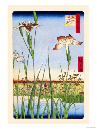 Iris Garden at Horikiri Prints by Ando Hiroshige