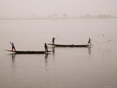 Fishing on the River Niger, Niger Inland Delta, Segou Region, Mali, West Africa, Africa Fotografisk tryk af Gavin Hellier