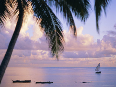 Looking out on the Indian Ocean, Zanzibar, Tanzania, East Africa, Africa Photographic Print by I Vanderharst