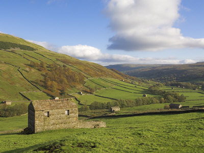 Stone Barns in Swaledale, Near Keld, Yorkshire Dales National Park, Yorkshire, England, UK Photographic Print by Neale Clarke