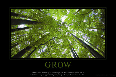 Růst, Grow, R. Reagan (citát vangličtině) Plakát