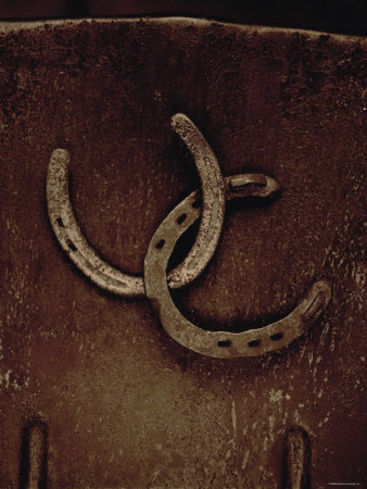 Lucky Horse Shoes on Rust Metallic Premium Poster